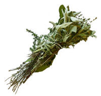 File:Bouquet garni p1150476 extracted.jpg
