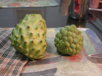 File:Sugar apple.jpg